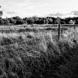 287-Country-Fence